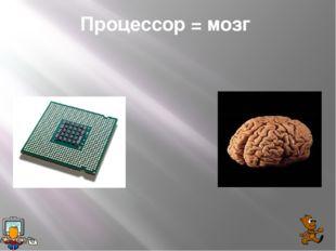 Процессор = мозг
