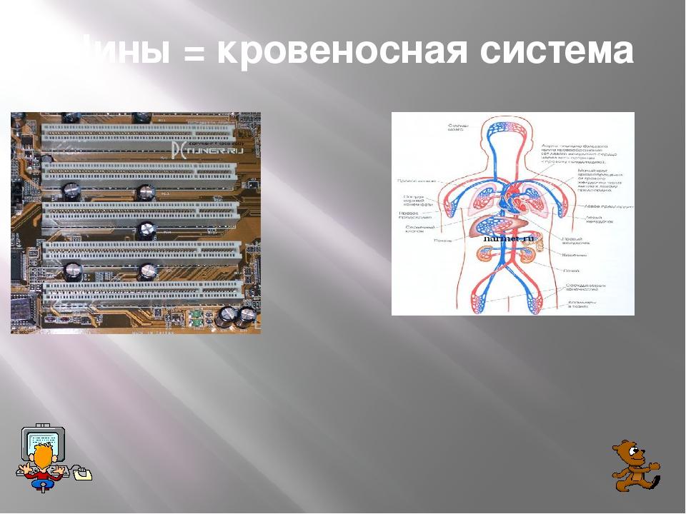 Шины = кровеносная система
