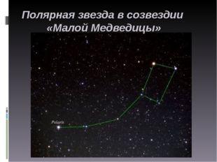 Полярная звезда в созвездии «Малой Медведицы»