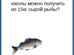 При сушке рыба теряет 75% своего веса. Сколько килограмм юколы можно получить