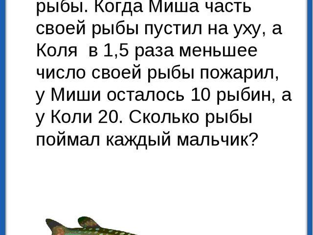 Миша и Коля поймали одинаковое количество рыбы. Когда Миша часть своей рыбы п...