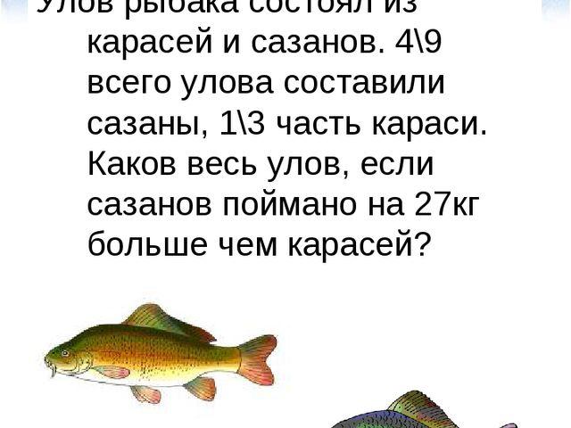 Улов рыбака состоял из карасей и сазанов. 4\9 всего улова составили сазаны, 1...