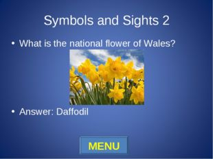 Symbols and Sights 2 What is the national flower of Wales? Answer: Daffodil M