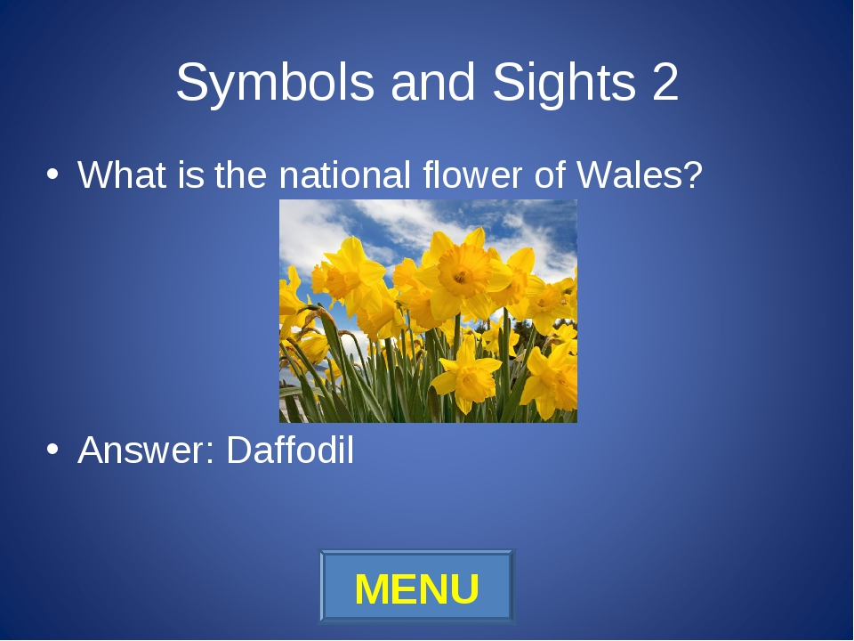 Symbols and Sights 2 What is the national flower of Wales? Answer: Daffodil M...