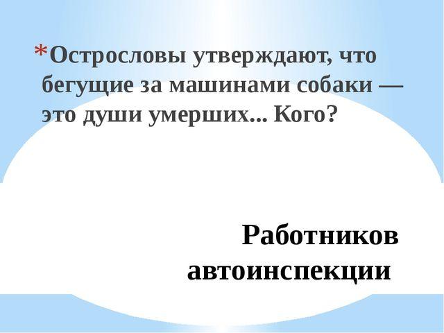Работников автоинспекции Острословы утверждают, что бегущие за машинами собак...