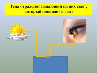 Тела отражают падающий на них свет , который попадает в глаз