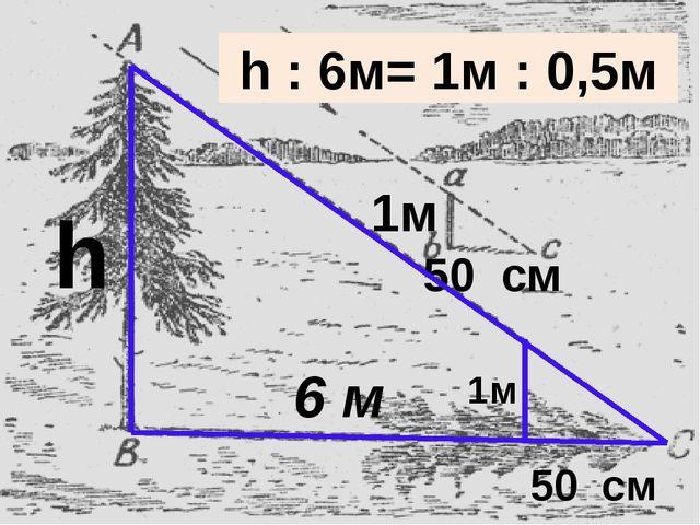 6 м 50 см 1м 50 см 1м h h : 6м= 1м : 0,5м