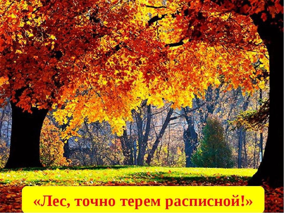«Лес, точно терем расписной!»
