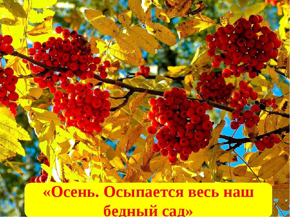 «Осень. Осыпается весь наш бедный сад»