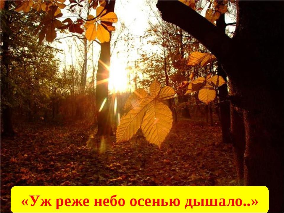 «Уж реже небо осенью дышало..»