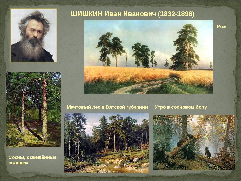 ШИШКИН Иван Иванович (1832-1898) Мачтовый лес в Вятской губернии Рож Утро в с...