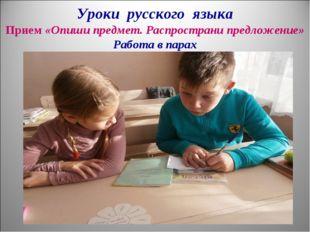 Уроки русского языка Прием «Опиши предмет. Распространи предложение» Работа в