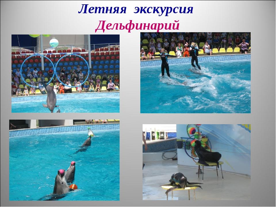 Летняя экскурсия Дельфинарий