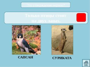 ССЫЛКИ НА ИСПОЛЬЗОВАННЫЕ ИСТОЧНИКИ: http://zoomet.ru/mal/malchevski_oglav.ht