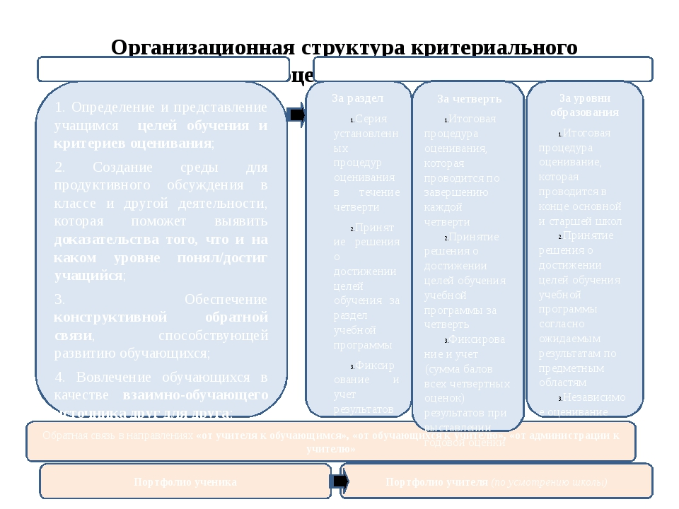 Организационная структура критериального оценивания Обратная связь в направле...