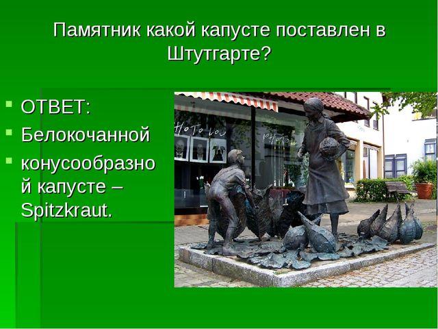 Памятник какой капусте поставлен в Штутгарте? ОТВЕТ: Белокочанной конусообраз...