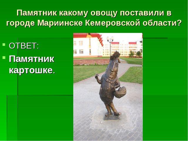 Памятник какому овощу поставили в городе Мариинске Кемеровской области? ОТВЕТ...