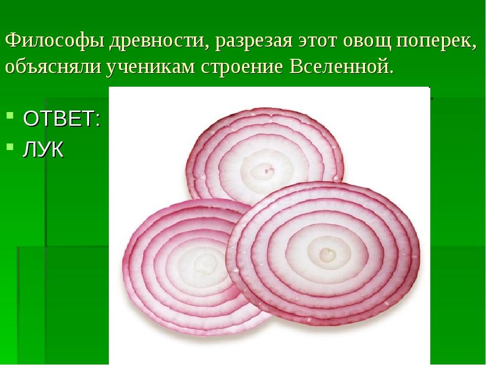 Философы древности, разрезая этот овощ поперек, объясняли ученикам строение В...