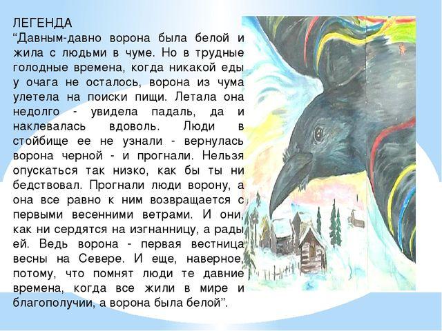 """ЛЕГЕНДА """"Давным-давно ворона была белой и жила с людьми в чуме. Но в трудные..."""