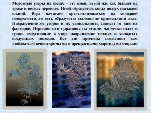 Морозные узоры на окнах – это иней, такой же, как бывает на траве и ветках де