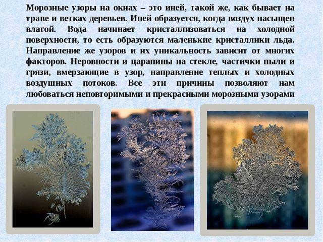 Морозные узоры на окнах – это иней, такой же, как бывает на траве и ветках де...