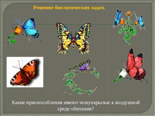 Решение биологических задач. Какие приспособления имеют чешуекрылые к воздушн