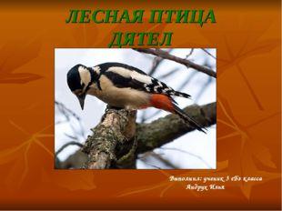 ЛЕСНАЯ ПТИЦА ДЯТЕЛ Выполнил: ученик 3 «Б» класса Андрух Илья