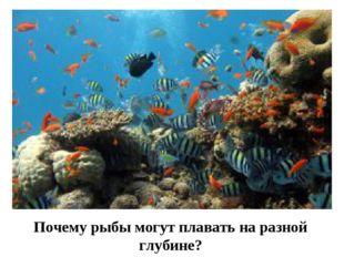 Почему рыбы могут плавать на разной глубине?