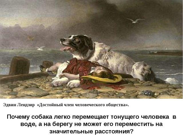 Эдвин Лендзир «Достойный член человеческого общества». Почему собака легко...