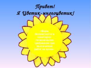 Привет! Я Цветик-многоцветик! «Меры безопасности и санитарно-гигиенические тр