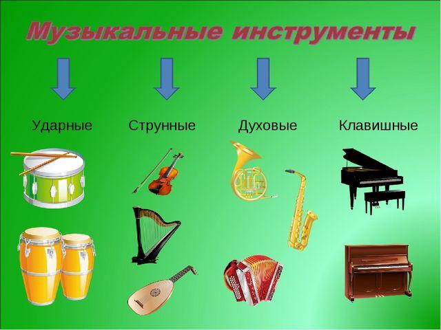 Ударные Струнные Духовые Клавишные