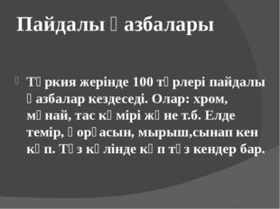 Пайдалы қазбалары Түркия жерінде 100 түрлері пайдалы қазбалар кездеседі. Олар