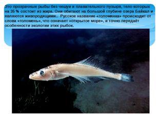 Это прозрачные рыбы без чешуи и плавательного пузыря, тело которых на 35% со