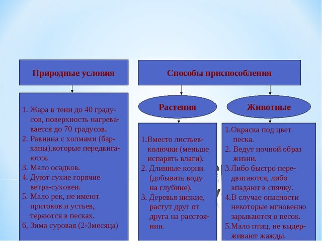 Природные условия Способы приспособления 1. Жара в тени до 40 граду- сов, пов...