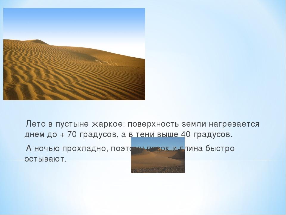 Лето в пустыне жаркое: поверхность земли нагревается днем до + 70 градусов,...