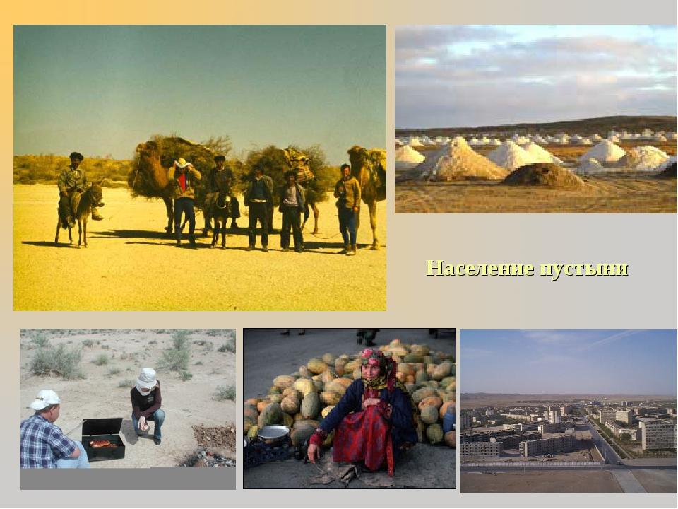 Население пустыни