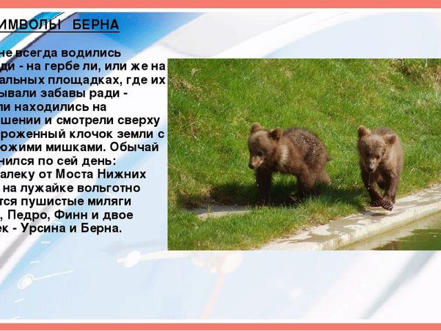 СИМВОЛЫ БЕРНА В Берне всегда водились медведи - на гербе ли, или же на специа...
