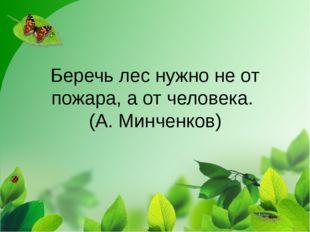 Беречь лес нужно не от пожара, а от человека. (А. Минченков)
