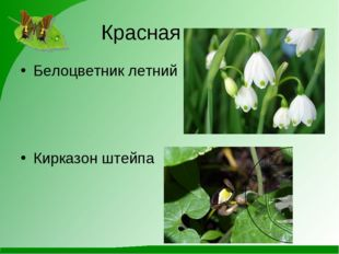 Красная книга Белоцветник летний Кирказон штейпа