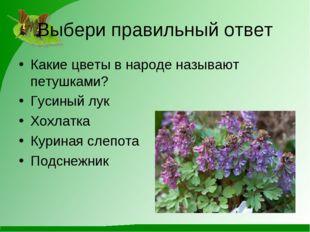 Выбери правильный ответ Какие цветы в народе называют петушками? Гусиный лук