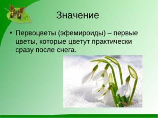 Значение Первоцветы (эфемироиды) – первые цветы, которые цветут практически с