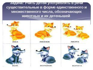 Задача: Учить детей употреблять в речи существительные в форме единственного
