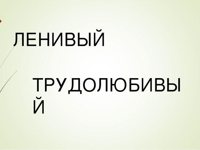 ЛЕНИВЫЙ ТРУДОЛЮБИВЫЙ
