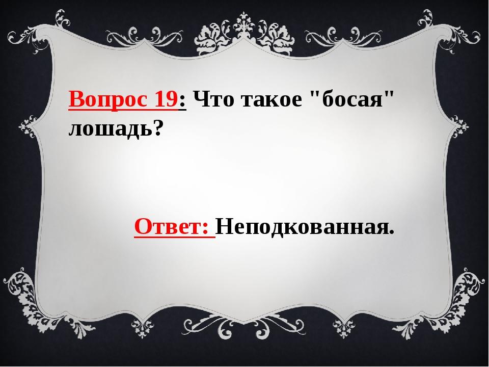 """Вопрос 19: Что такое """"босая"""" лошадь? Ответ: Неподкованная."""