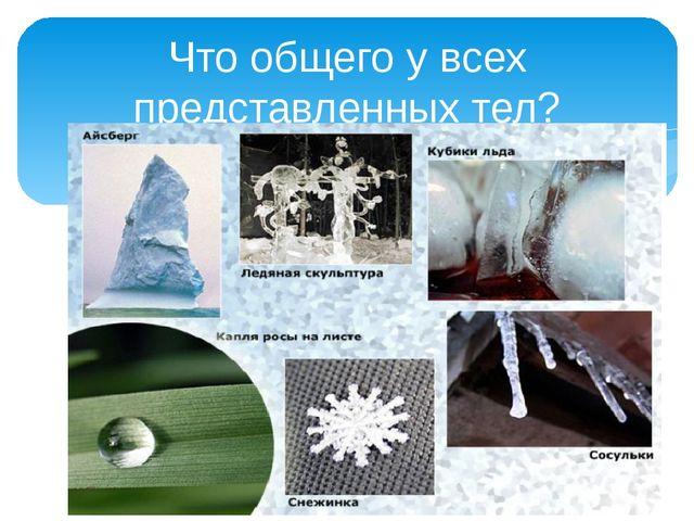 Что общего у всех представленных тел? Из какого вещества состоят все эти тел...