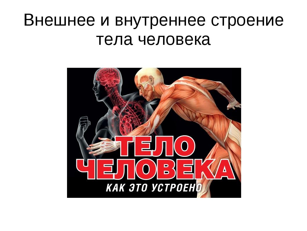 Внешнее и внутреннее строение тела человека