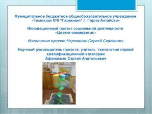 """Муниципальное бюджетное общеобразовательное учреждение «Гимназия №9 """"Гармония"""
