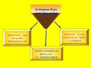 Өз бетінше білім жетілдіру көздері Педагогика ғылымы жетістіктерін жүйелі оқы