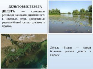 ДЕЛЬТА — сложенная речными наносами низменность в низовьях реки, прорезанная