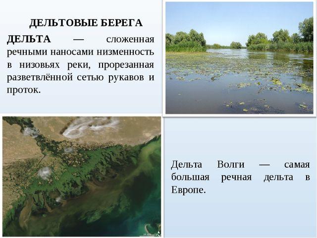 ДЕЛЬТА — сложенная речными наносами низменность в низовьях реки, прорезанная...